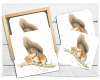 Squirrel Gift Box & Coasters, Squirrel Coaster, Robin Drinks Mat